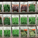 selection of seed packs on shelf